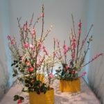Ikebana Workshop: Japanese Flower Arranging with Frederica Marshall