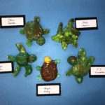 PreK-K Ceramic Sea Turtles