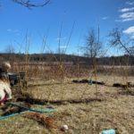Kieran and Alva Semler's outdoor art