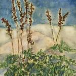 """""""Ferns, Winter,"""" Watercolor"""