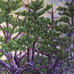 """""""Old Pines,"""" Acrylic on Canvas Triptych"""